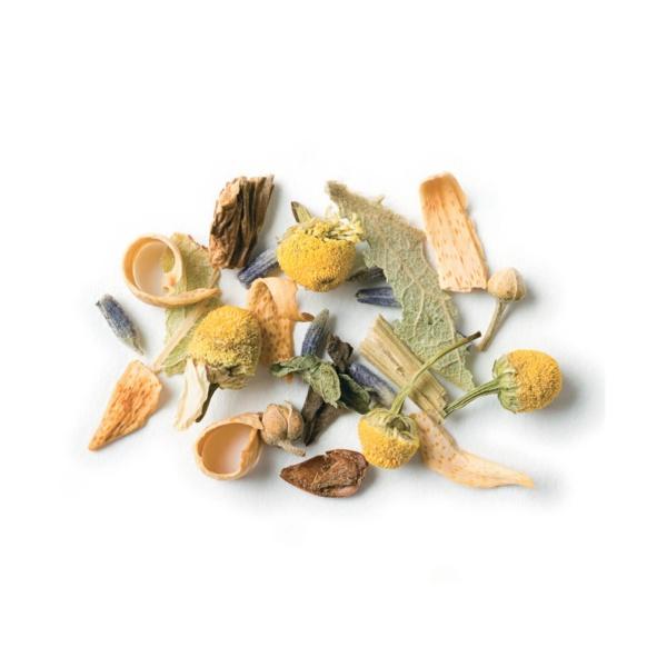 Grüntee | Organischer und Kräuter Tee in der Schweiz kaufen, online bestellen
